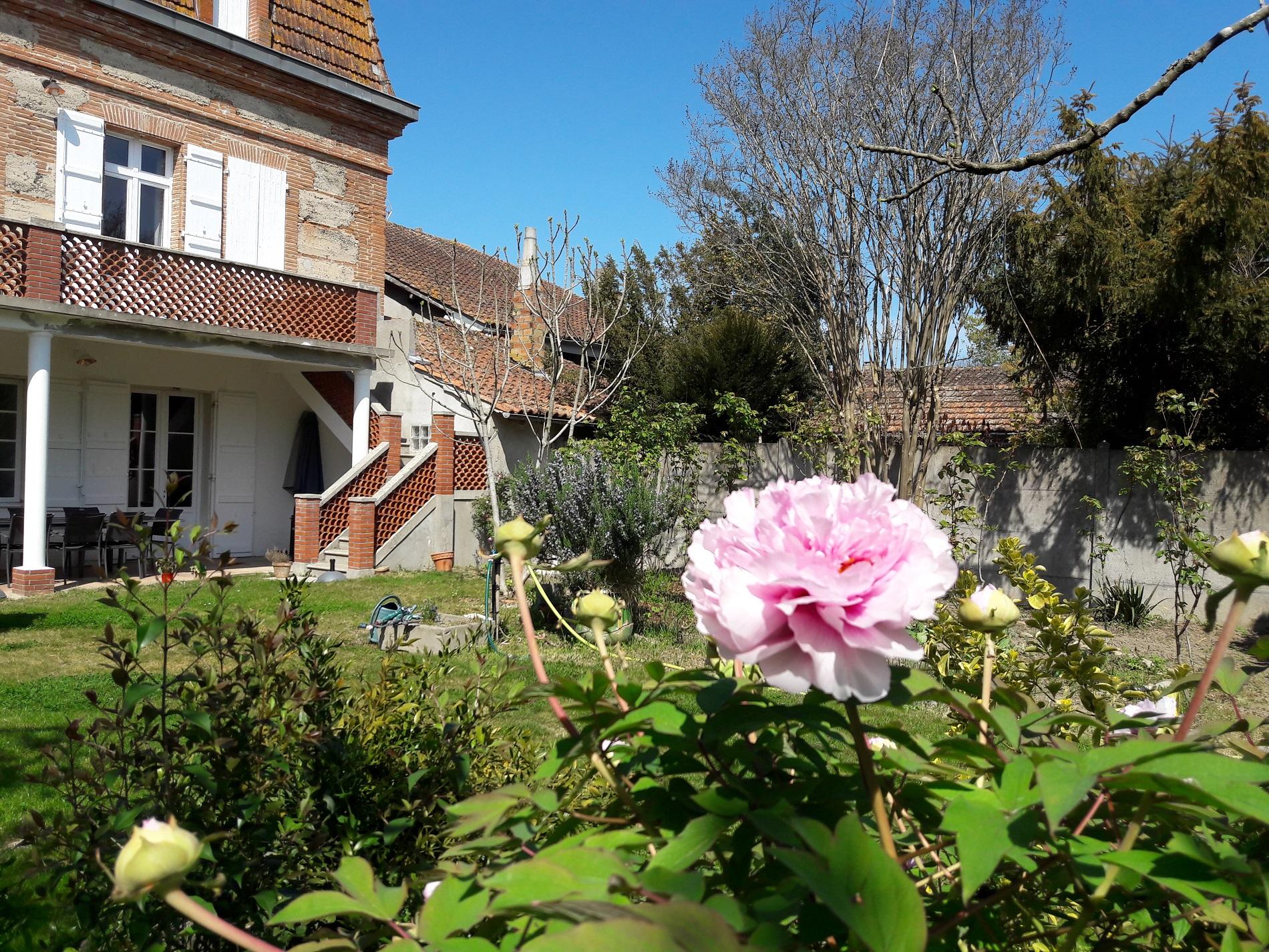 Maison côté jardin avec des pivoines en fleur
