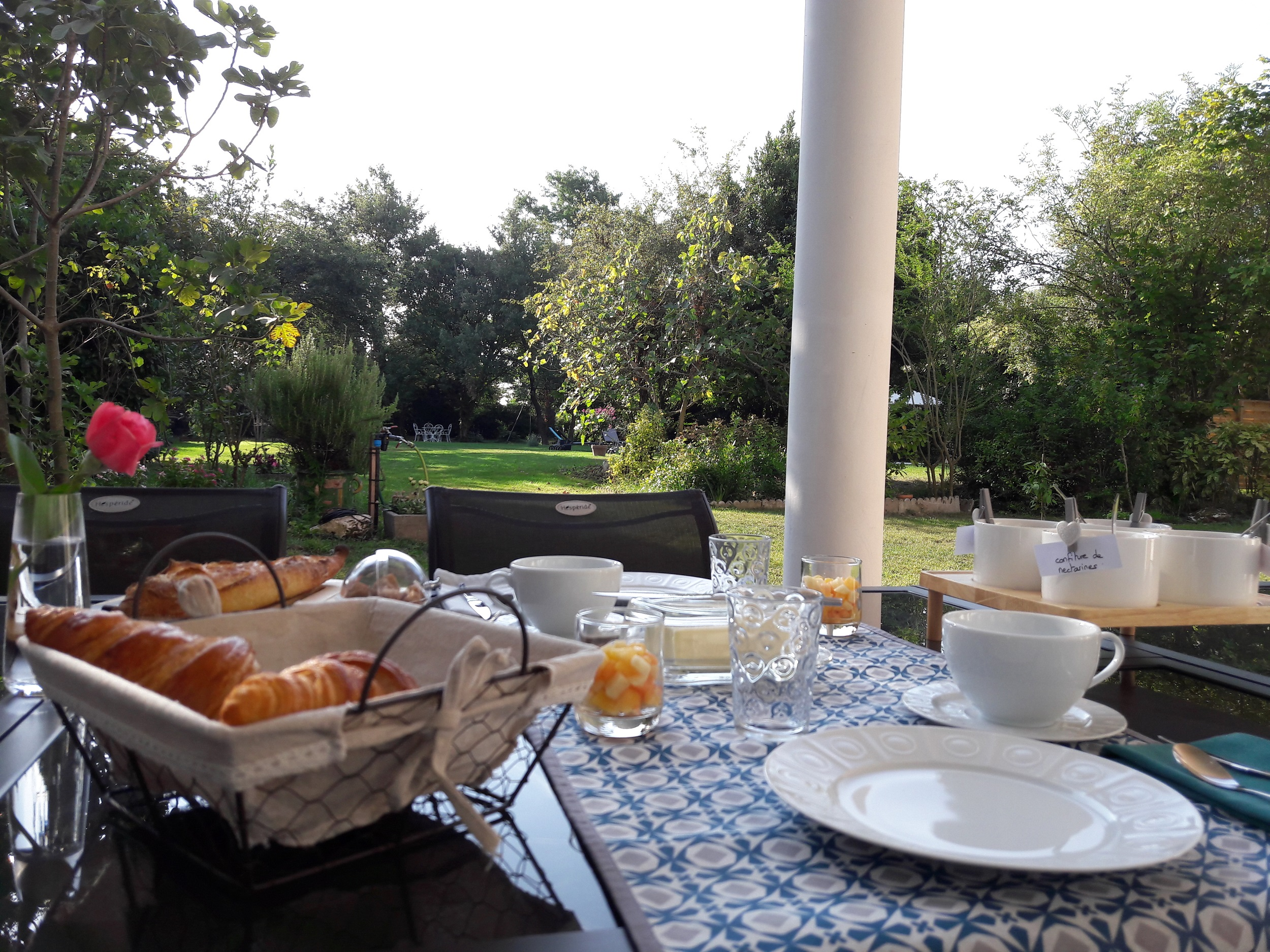 Petit-déjeuner servi en terrasse avec vue sur le jardin