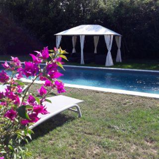 Belle et grande piscine avec des transats et un salon de jardin pour se détendre sous l'ombre de la tonnelle