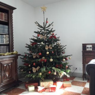 Beautiful Christmas tree in the bed and breakfast