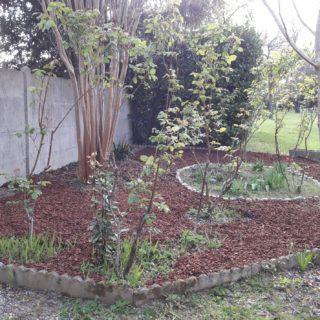 Jardin de la maison d'hôtes avec des arbres et des fleurs