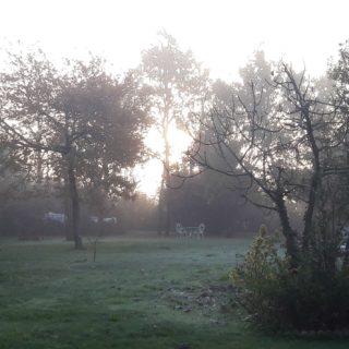 Jardin de la maison d'hôtes un matin de brume