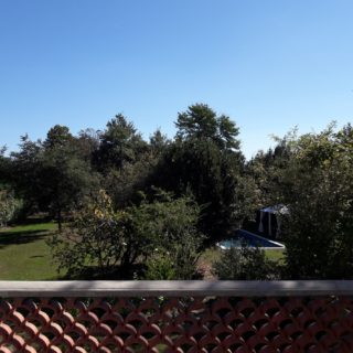 Beautiful garden view from the terrace of a suite