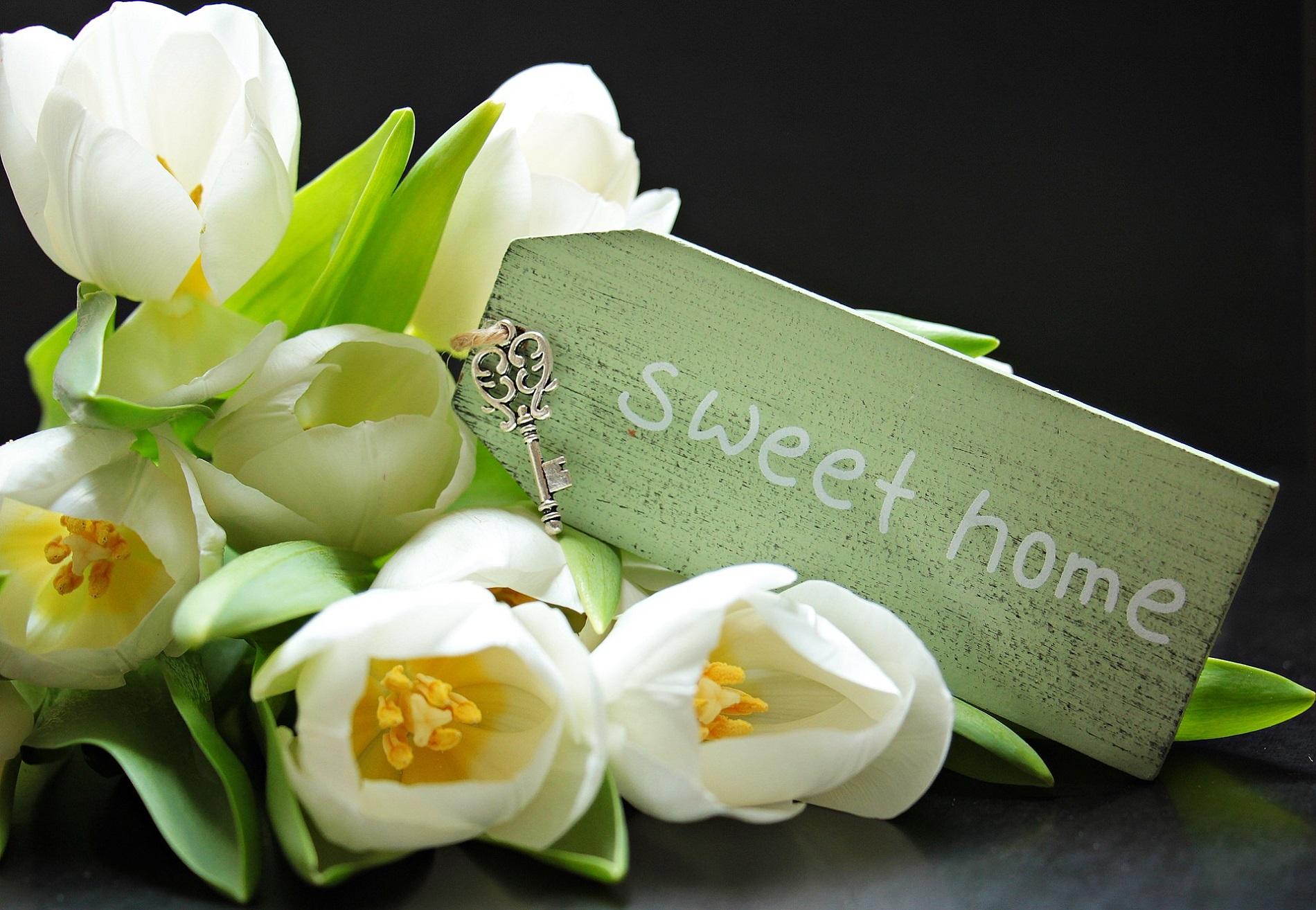 Les clés de notre sweet home pour privatiser la maison
